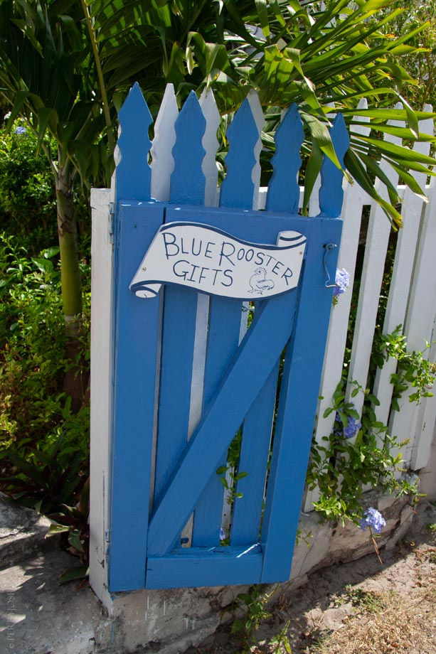 Blue Rooster Gifts