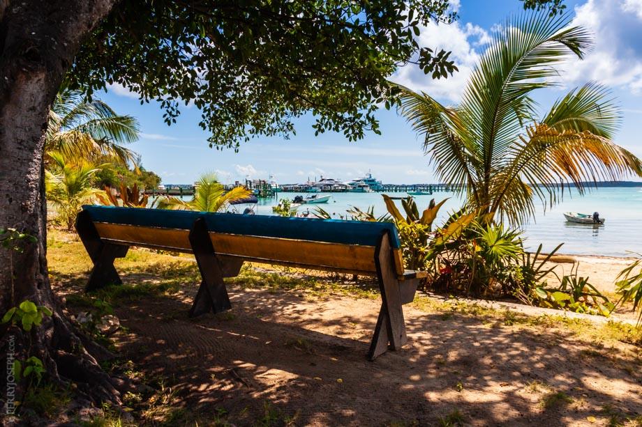 Bench Overlooking Harbour Island Bay