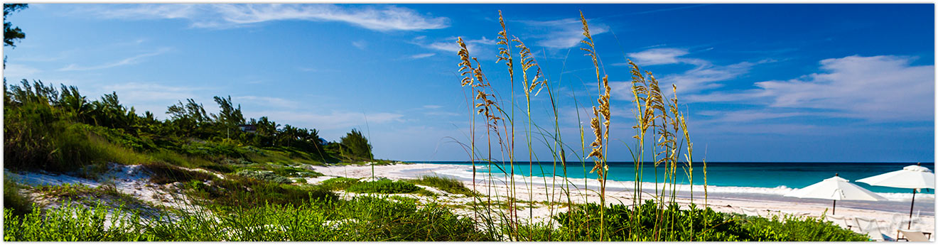 Beachfront on Harbour Island Bahamas.
